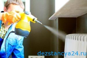 Как выбрать компанию для дезинсекции дезинфекции и дератизации
